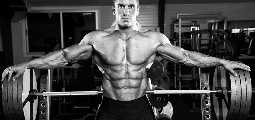 Shoulder Workouts Bodybuilding